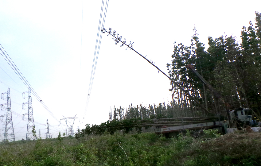 Reckless public work causes massive outage in southern VN