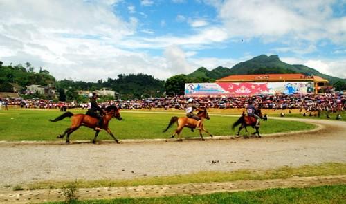 Binh Duong cancels $350 mln horse racing project