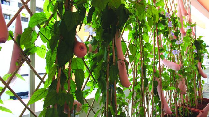 Vietnam joins 2013 Singapore Biennale exhibit