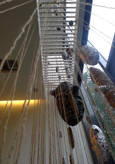 Experimental contemporary sculpture exhibit ongoing