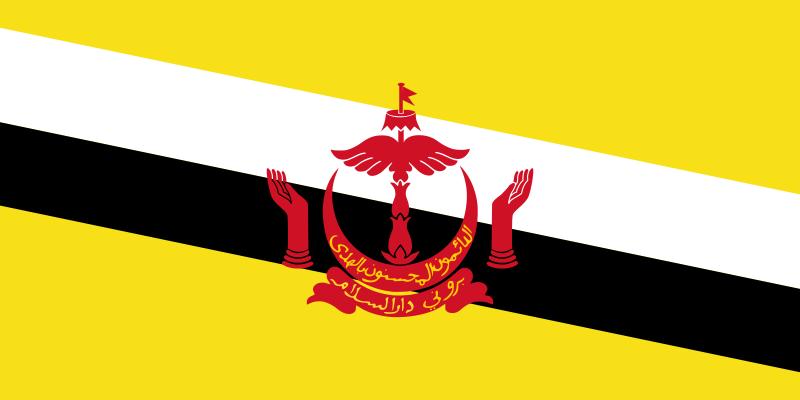 Hotline set up between navies of Vietnam and Brunei