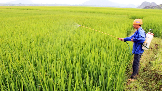 VN signs MoU with RoK to boost agricultural cooperation