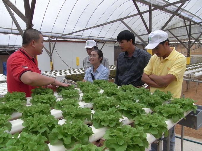 Farming without soil