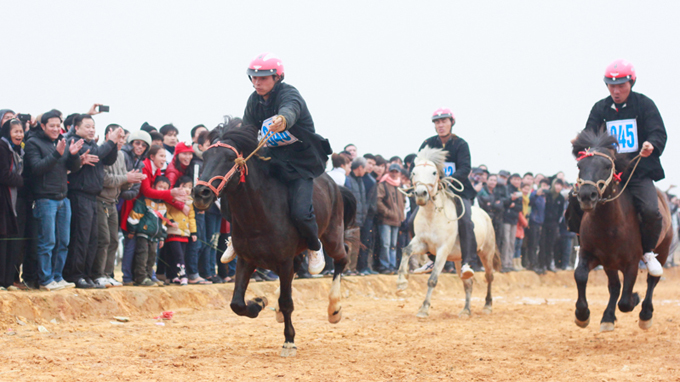 Mountain horse racing a highlight at Hanoi festival