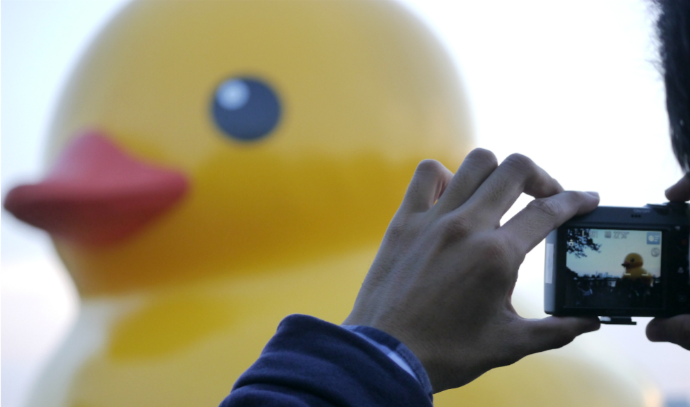 Giant Rubber Duck floats on Saigon lake, lures thousands