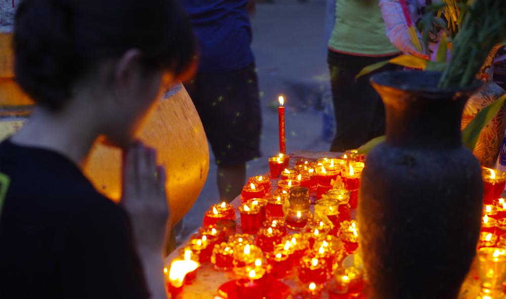 Vietnam city celebrates UN Day of Vesak 2014 (photos)