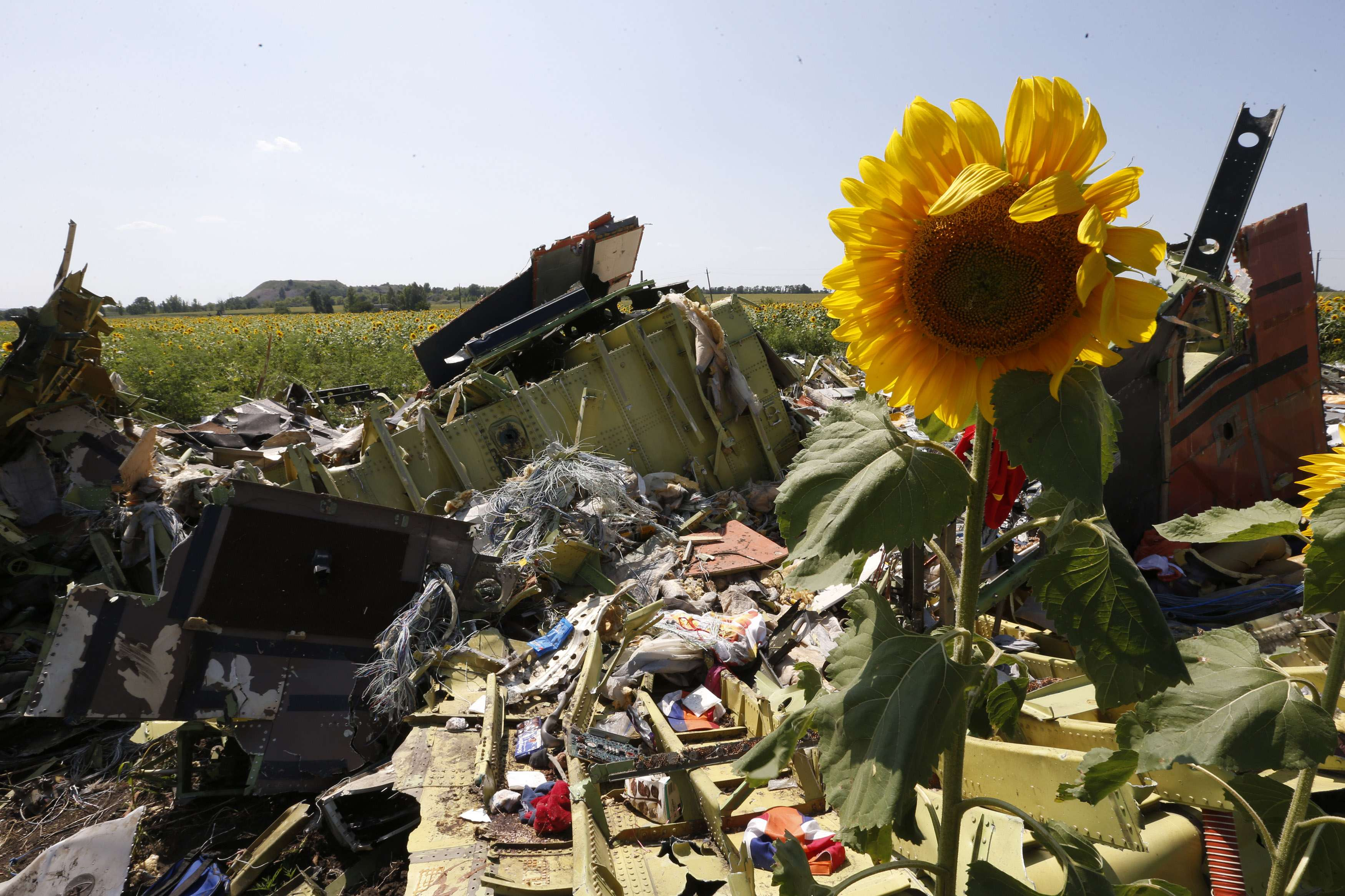 Australia says chance of MH17 site visit not good