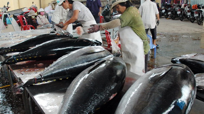 Vietnam exports first catch of tuna landed with Japanese technology to Japan