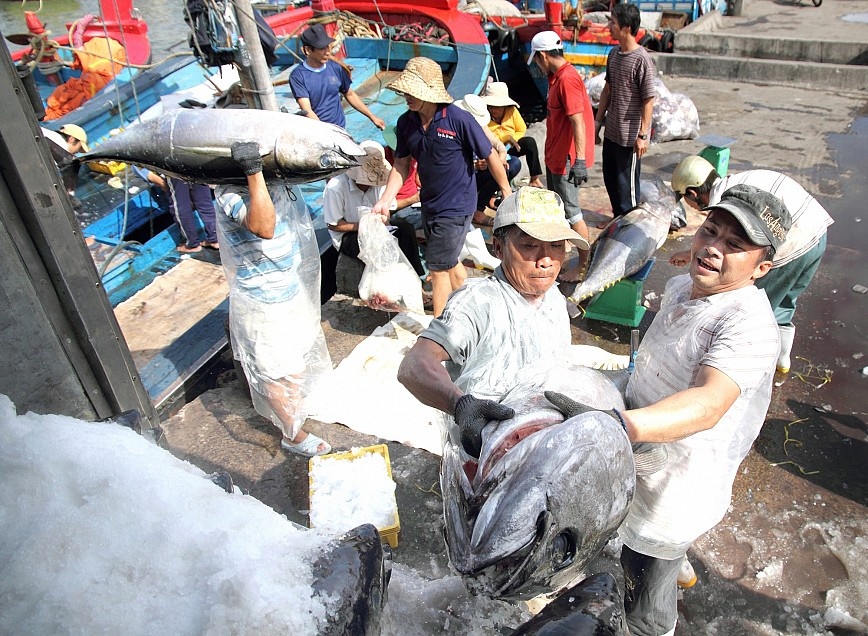 Vietnam's 1st catch of tuna fished with Japanese technology sells out in Japan