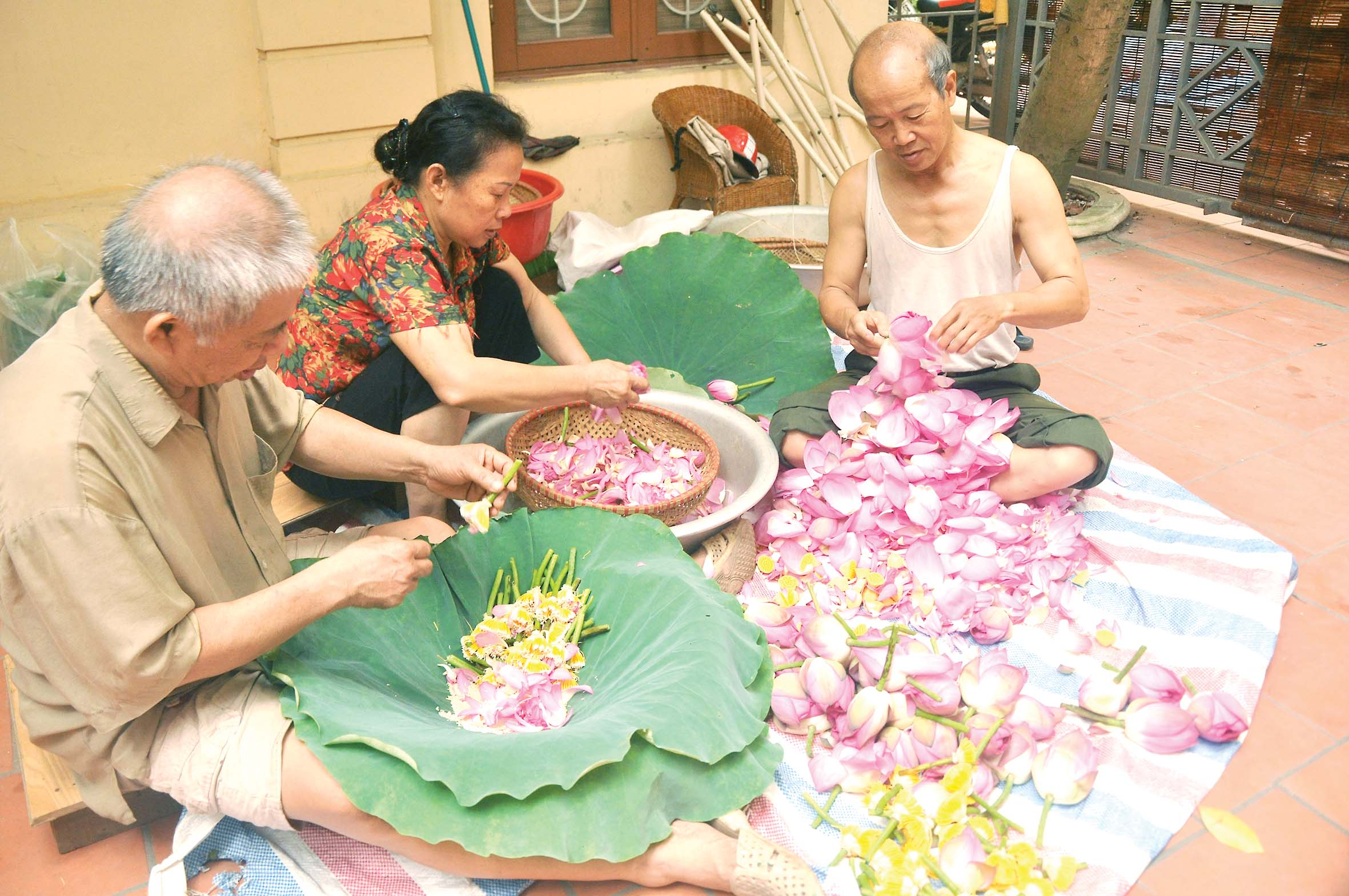 The dying art of embalming tea with lotus scent in Vietnam's capital