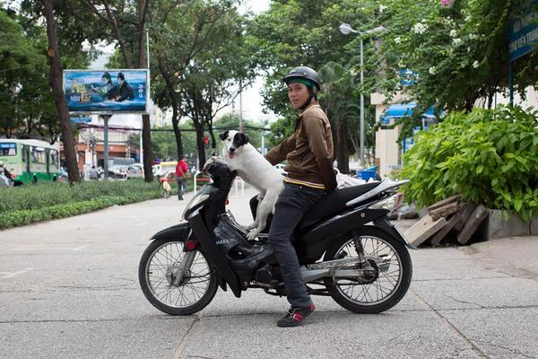 American photographer takes portraits of Vietnamese during world tour