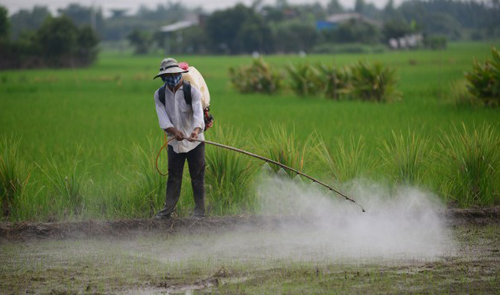 Contaminated soil a major, but ignored, problem in Vietnam