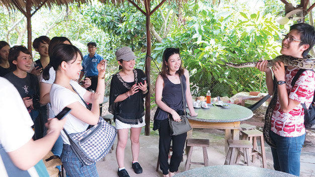 Only 6% of int'l tourists return to Vietnam: survey