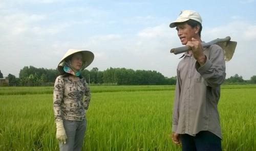 Vietnam woman helps farmers produce organic rice