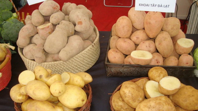 Vietnam cooperative displays Da Lat, Chinese produce in pairs to reveal clear difference