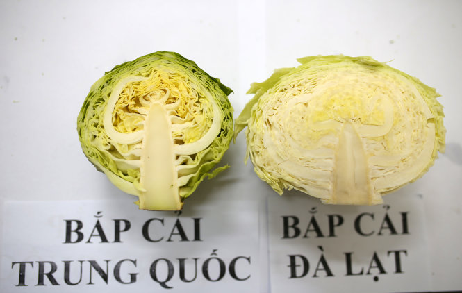 Photos show striking difference between Chinese veggie and Vietnam's Da Lat produce