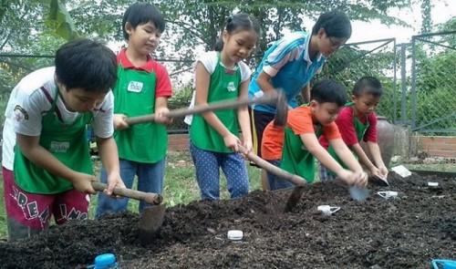 In Vietnam, urban parents want kids to gain life experience via outdoor activities