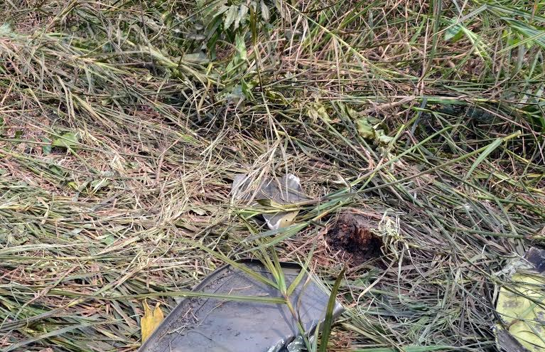Crash site of military helicopter UH-1 (photos)