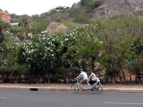 Young Vietnamese, tourists take up riding tandem bikes