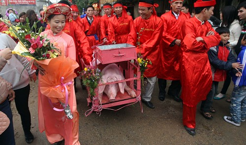 Vietnam suggests changing name, limiting public view of pig slaughter fest