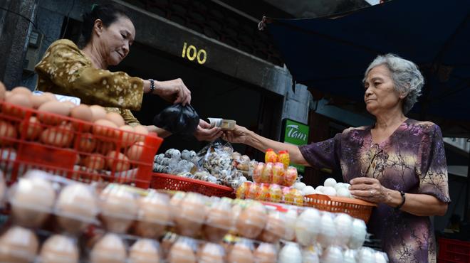 World's largest egg producer seeks Vietnamese partners