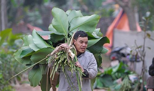 'Dong' leaf village in northern Vietnam