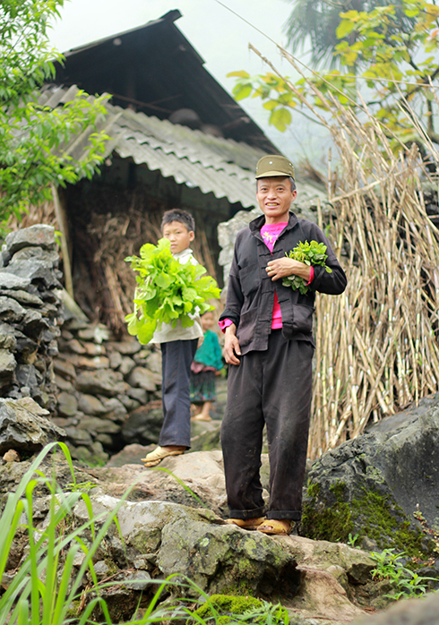 A Mong ethnic man and boy are pictured picking up home-grown vegetables to treat their guests to a rustic, cozy meal.