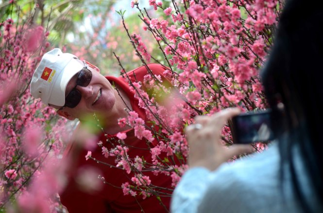 Unbelievable beauty of cherry blossoms in Hanoi (photos)
