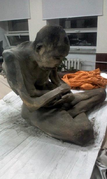 Mongolia mummy find highlights Buddhist 'living gods' tradition
