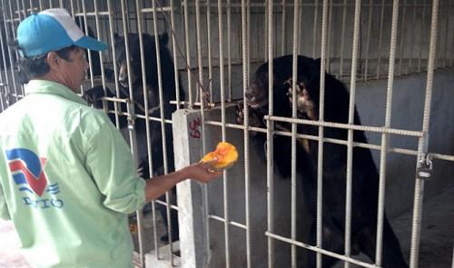 Home-raising wild animals in Vietnam: Risks far outweigh fun, benefits