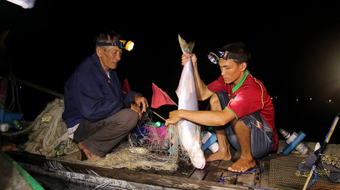 Fishing, lotus tours in southern Vietnam beguile tourists