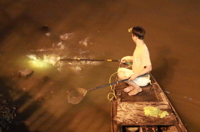 Anglers 'massacre' fish via electrocuting along Ho Chi Minh City canal