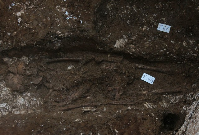 Archeologists unearth five-millennium-old skeletons believed to be remains of ancient Vietnamese