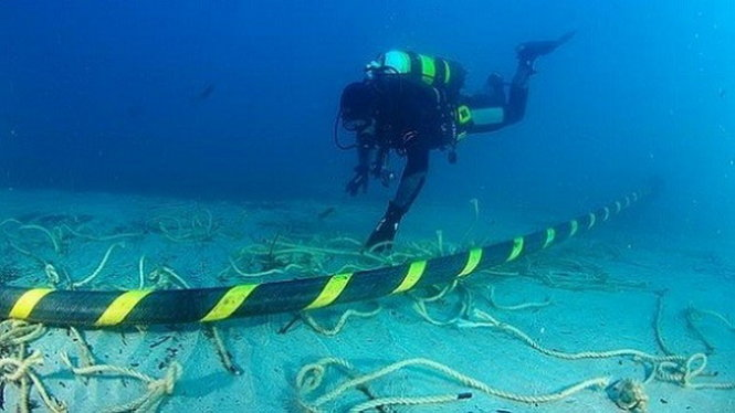 Cause of Vietnam's snail-like Internet speed identified; repairs to take a month