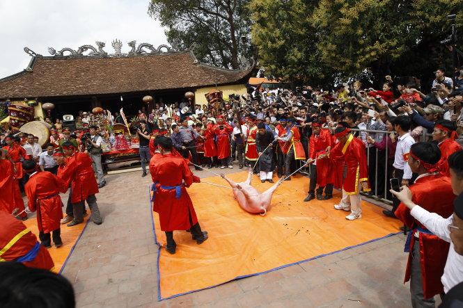 Brutal animal killing festivals to be eliminated in Vietnam: minister
