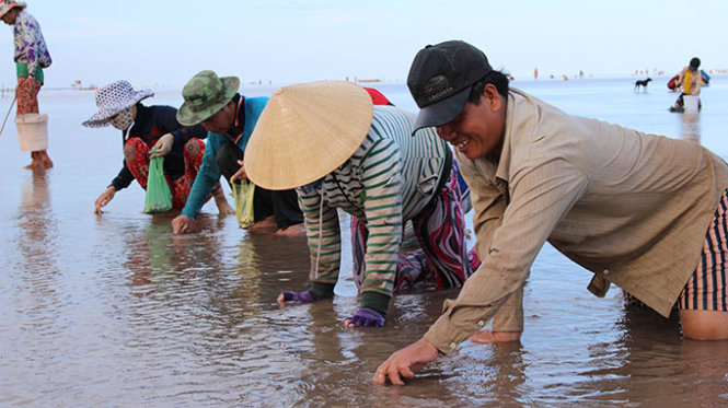 Vietnamese authorities indirectly create dispute over oyster catching on coasts