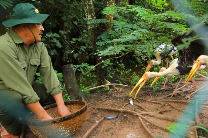 A trainer of wild birds in Vietnam's Mekong Delta region