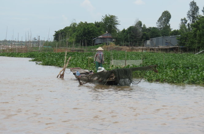 No flood without money for farmers in southern Vietnam