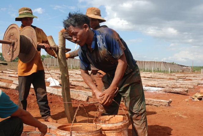 Central Vietnam forecast to suffer severe El Nino drought