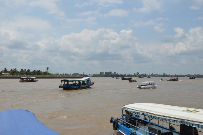 Mekong River hydro dams to take heavy toll on Vietnam: experts