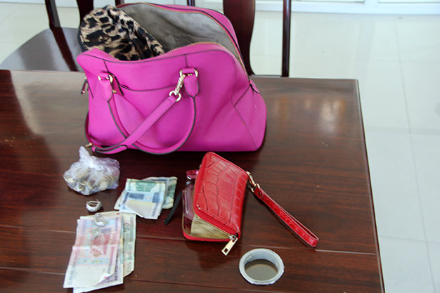Police hold suspect for snatching Russian tourist's bag in Vietnam's Da Nang