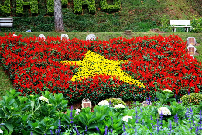 Flower festival expected to attract 500,000 visitors to Vietnam's Central Highlands city