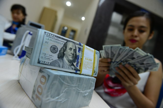 Vietnam's dollar market cools down as new forex management in sight