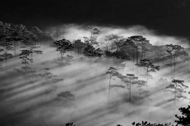 Black and white photo exhibition takes place in Da Lat