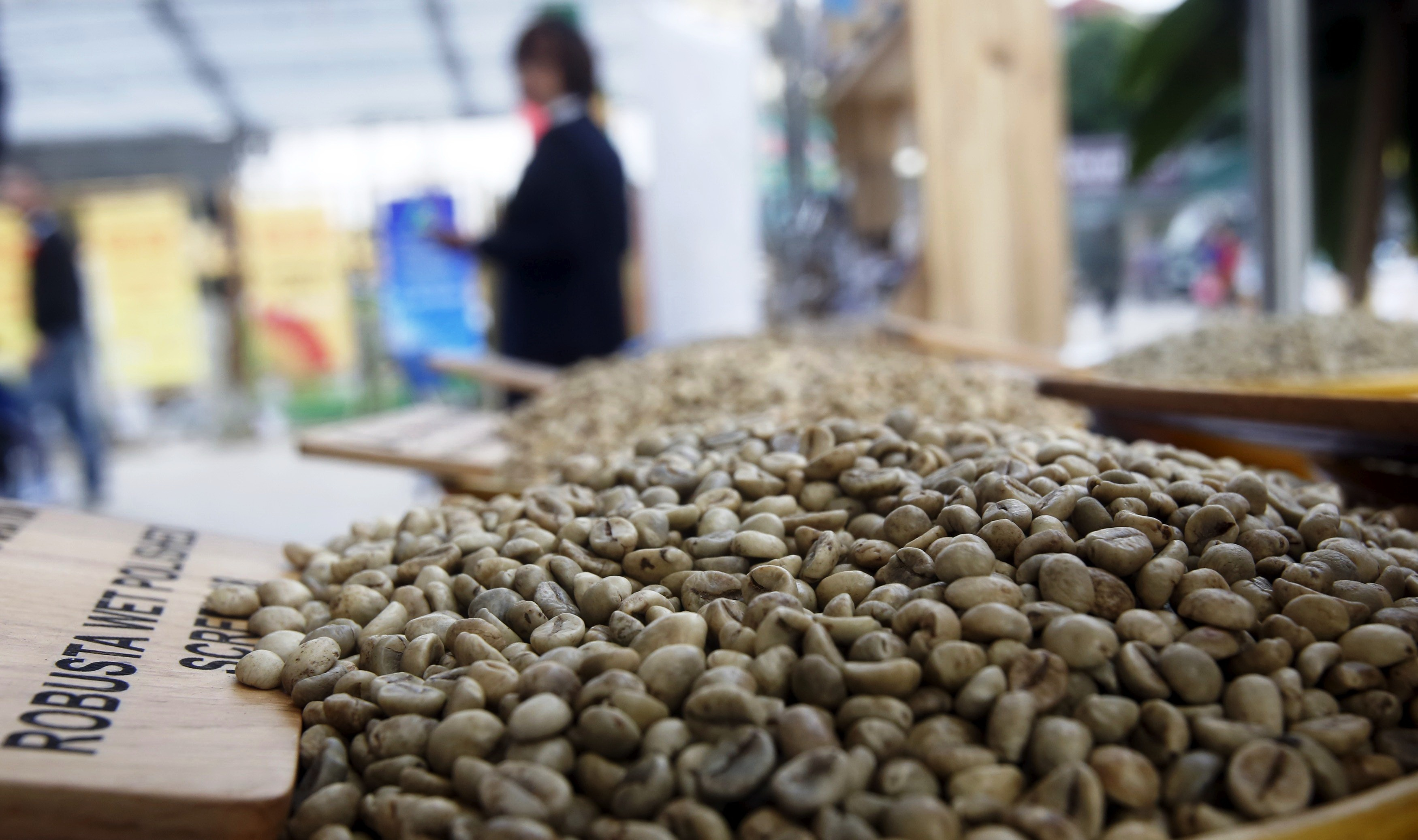 Softer loans won't quicken Vietnam coffee replanting