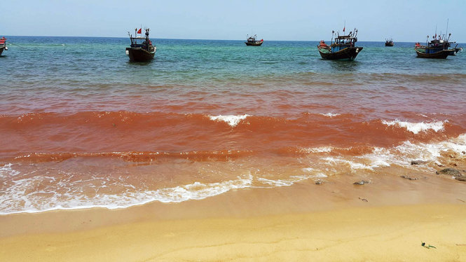 Sea turns red in Vietnamese province where fish died en masse