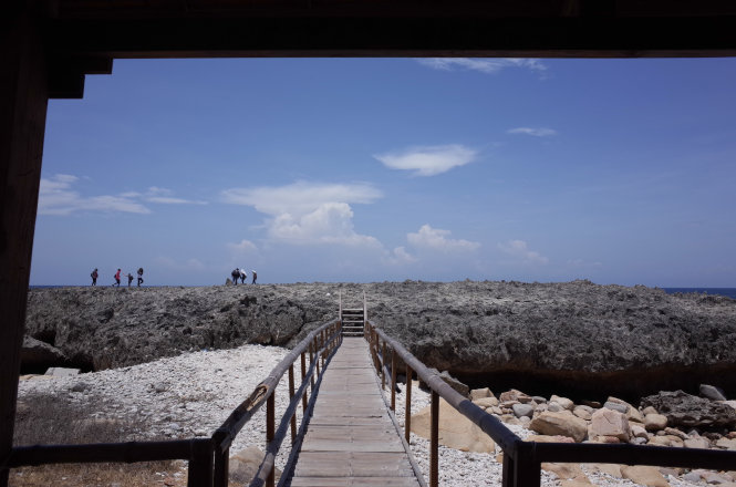 A small wooden bridge in Nui Chua National Park