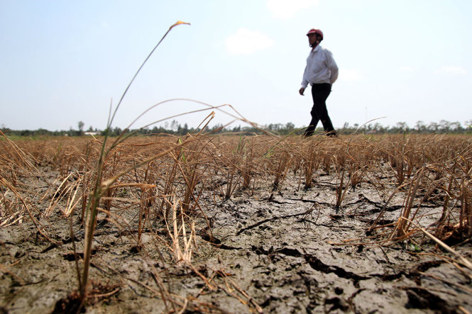 Vietnam drought leaves one million in urgent need of food aid: EU