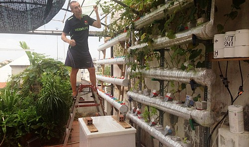 Czech man builds veggie garden on Ho Chi Minh City rooftop