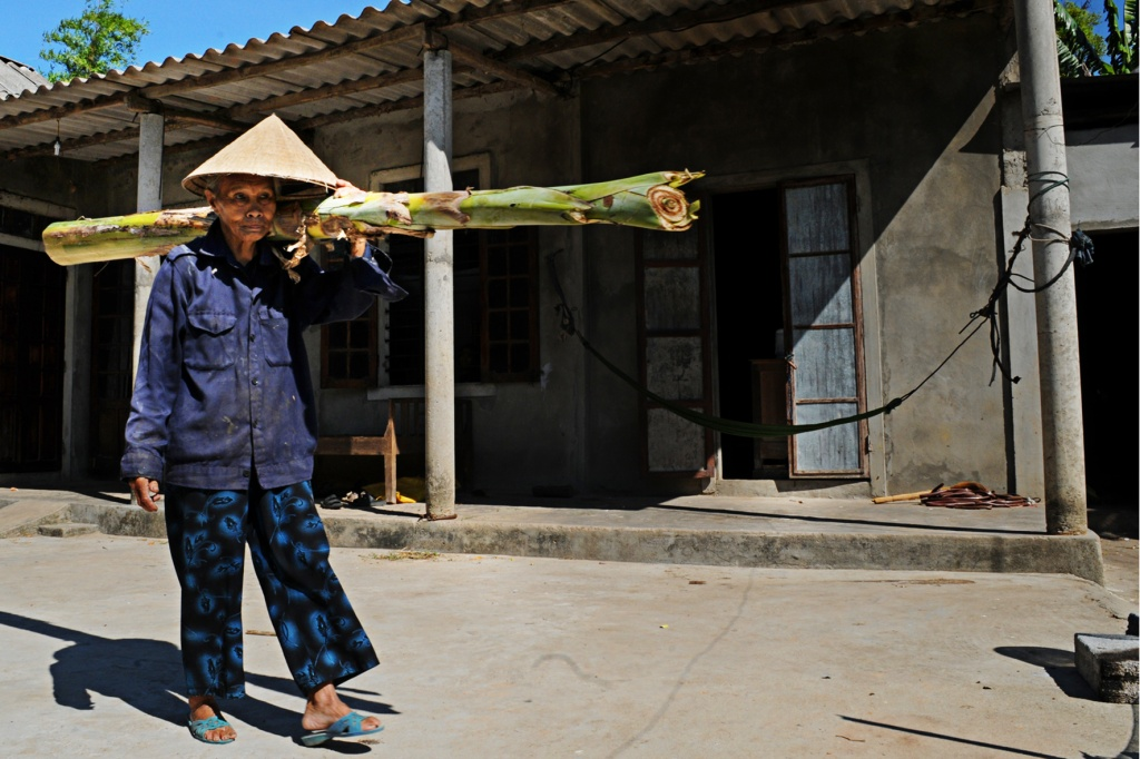 The elderly woman carries a banana tree, which will later be used to feed her chickens.